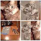 Jeanies_cat-164x164