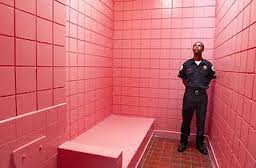 Prison Pink