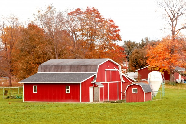 red-barn-in-autumn-field